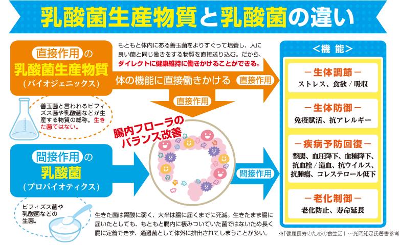 乳酸菌生産物質と乳酸菌の違い