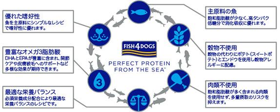 フィッシュ4ドッグの主原料は魚。優れた嗜好性、豊富なオメガ3脂肪酸、最適な栄養バランス