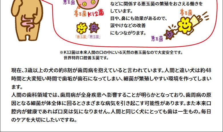 BLISMIX ブリスミックス-口腔内善玉菌K12配合