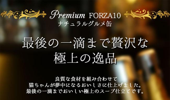 愛猫用ウエットフード プレミアムフォルツァ10 ナチュラルグルメ缶