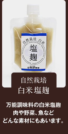 万能調味料の塩麹 ドレッシングタイプだから、かけタレやつけダレにも。自然栽培 白米塩麹