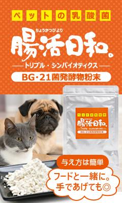 腸活日和。ペットの乳酸菌