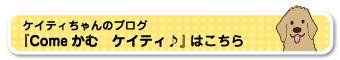 ケイティちゃんのブログへ