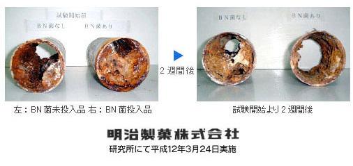 BN菌による排水管閉塞除去試験