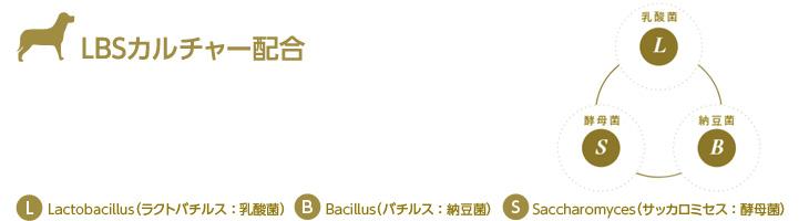 プロフェッショナル・バランス LBSカルチャー配合