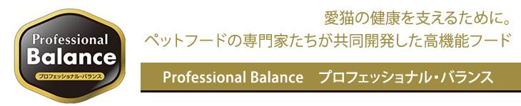 Professional Balance プロフェッショナル・バランス