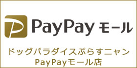 ドッグパラダイスぷらすニャンPayPayモール店