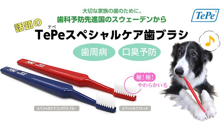 Tepe歯ブラシ