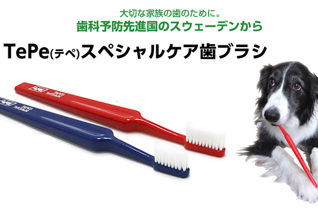 TePe スペシャルケア歯ブラシ